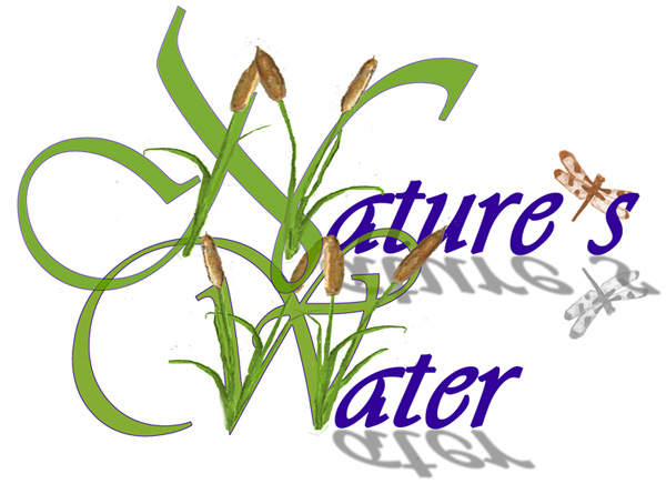 Nature's Water Logo